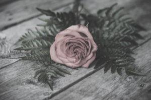 kjdewaal_rustic_rose_wood_2