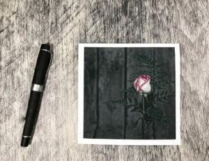 kjdewaal_rosebud_square_card_2