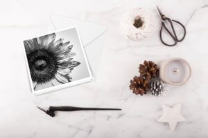 kjdewaal_shadow_of_a_sunflower_square_card