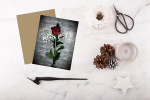 kjdewaal_just_because_rose_flat_notecard