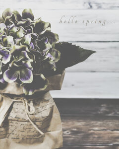 kjdewaal_hello_spring