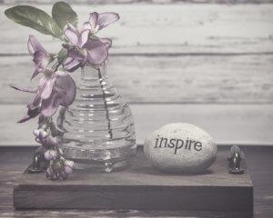 kjdewaal_inspire_vignette